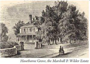 hawthornegrove